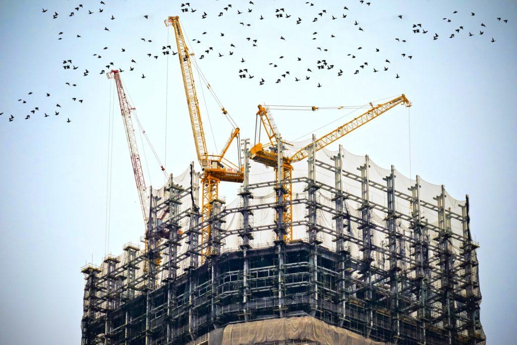 grues oiseaux immeubles hauteur